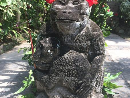 Bali, l'île des Dieux : notre TOP activités !