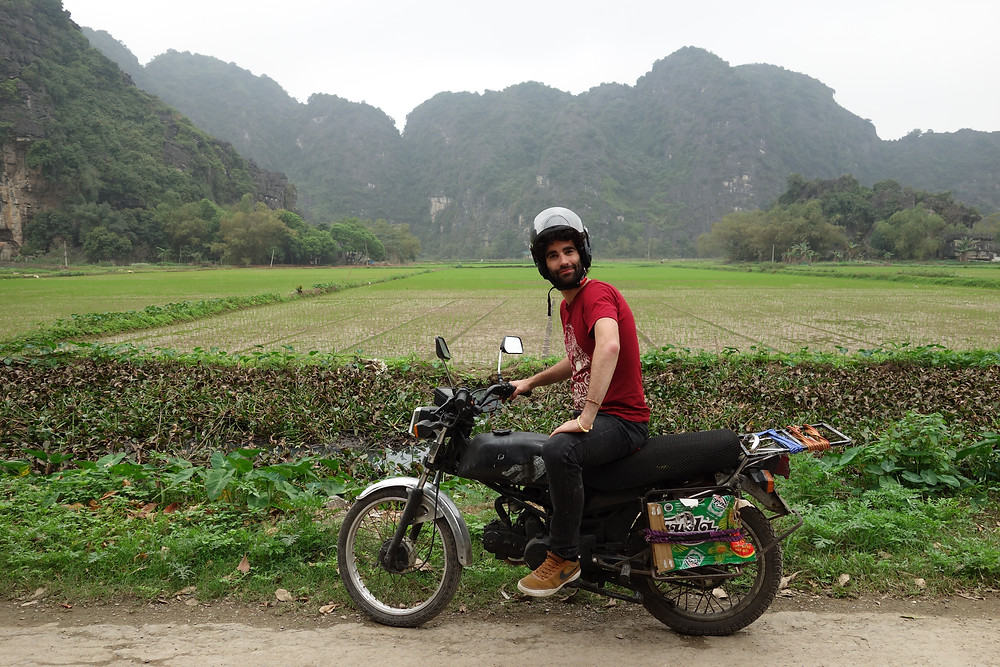 Rizières Ninh Binh