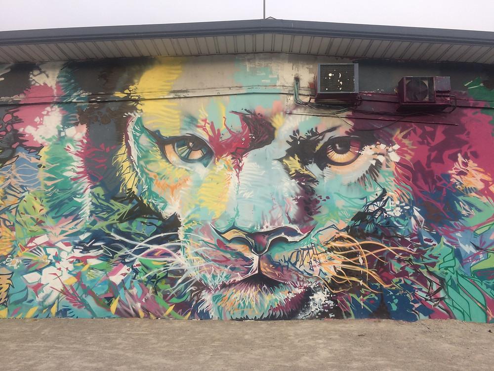 Street art dans grenoble