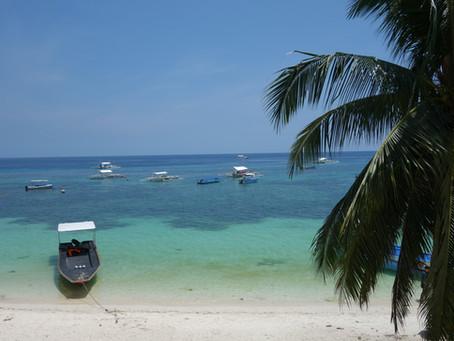 Bohol : Alona Beach, Tarsiers et Chocolate Hills
