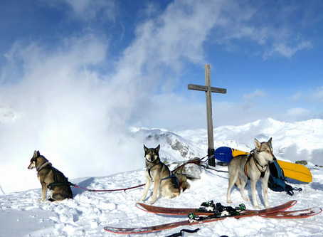 Making the impossible possible, adventure roadtrip from North Sweden to the Alps with 3 huskies