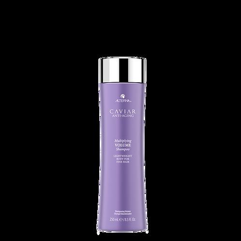 Caviar Shampoo Volume
