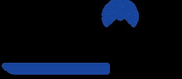 Sonic IQ logo.png