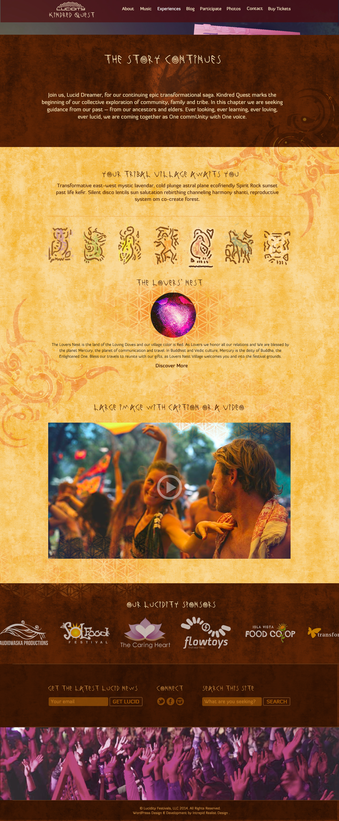 Lucidity 2015 Web Design