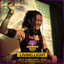 Living Light Social Media