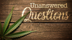 Unanswered Questions Program image-1