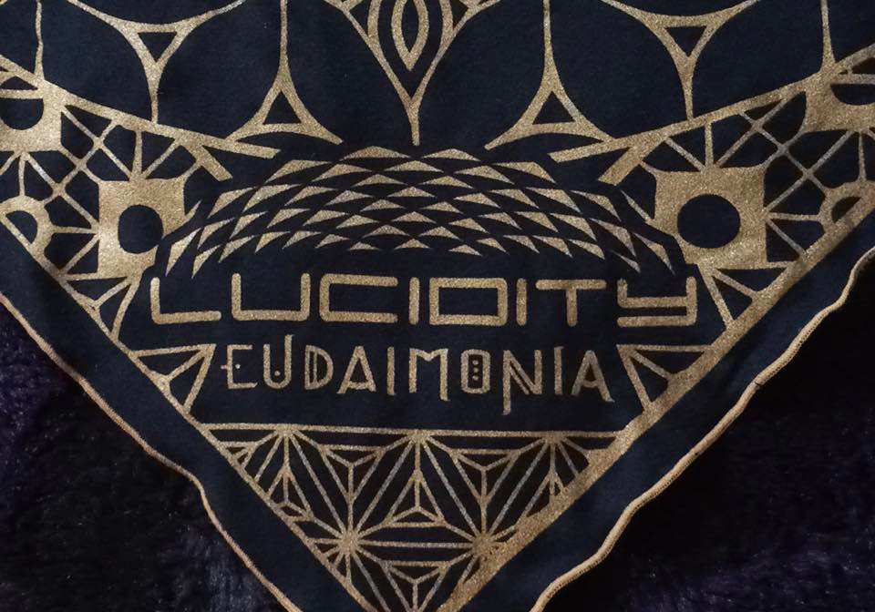 Lucidity Logo Closeup