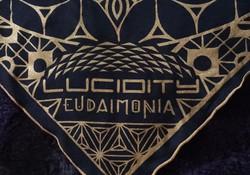 Lucidity Logo Closeup