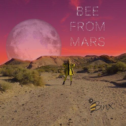 BINX - Bee From Mars Album