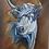 Thumbnail: Nguni Cow