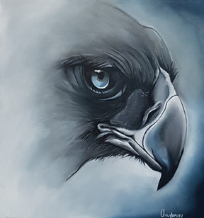 Fish Eagle, by Only Mpofu