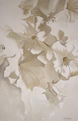 The Prettiest White on White
