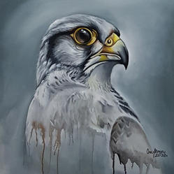 African Eagle by Only Mpofu