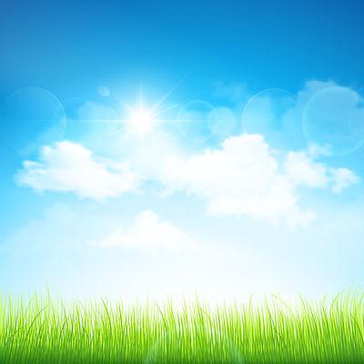 illustr-field-sky.jpg