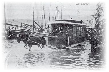 colma 1879 sfumata.png