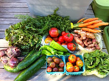 How to store your vegetables to keep them fresh and safe -- for farmers to distribute with their CSA shares