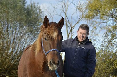 paardenstalling trailerladen Geraardsbergen