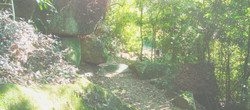 trilhas-barra-da-lagoa4