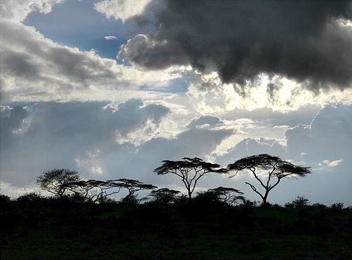 African skyline, Tanzania