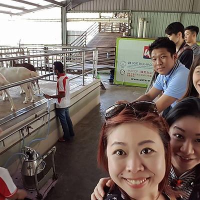 Q3 Quarterly Unit Top - UK Farm & Johor Premium Outlet