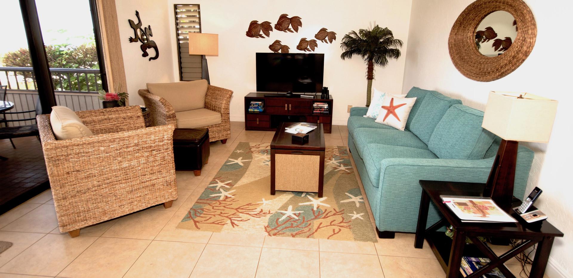 Living room - lanai