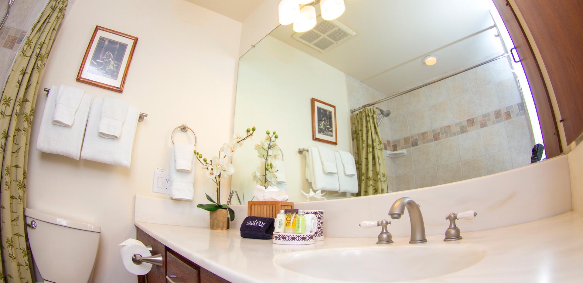 Wailea Ekolu #7 Guest bath with tub