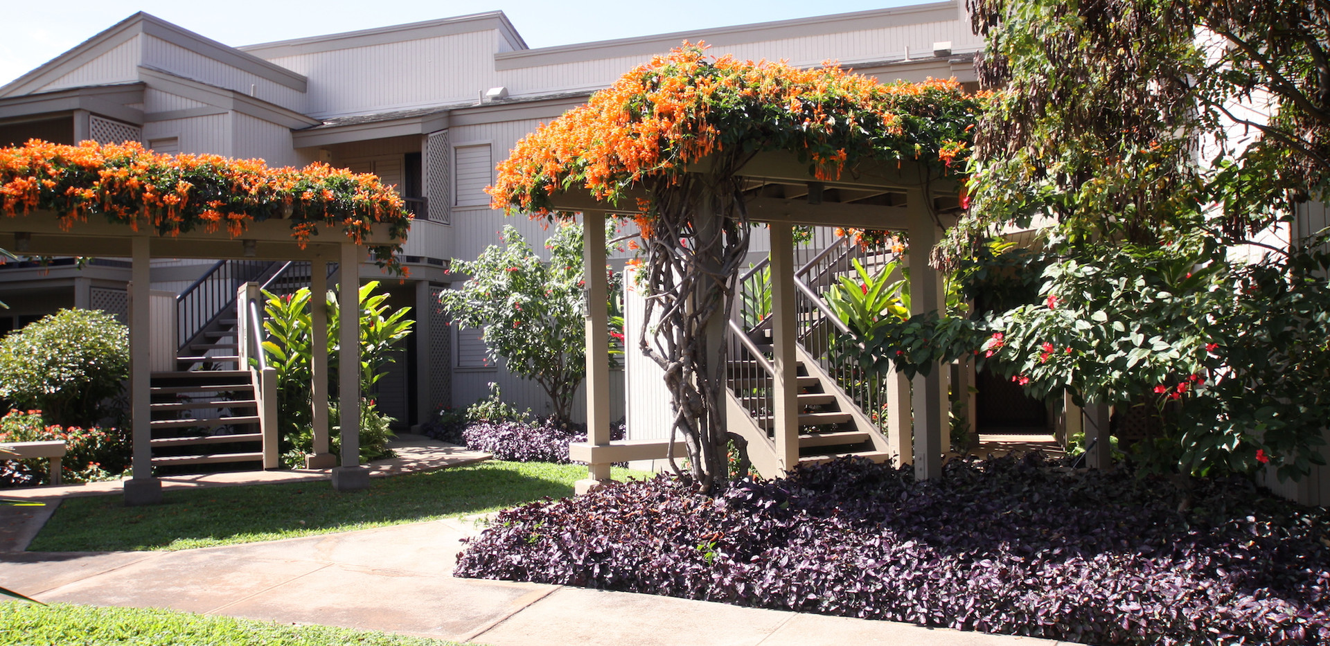 Wailea Ekolu #7 Entrance