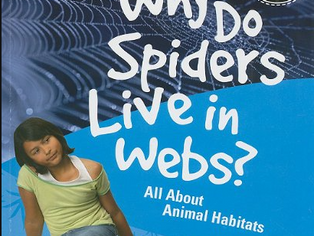 Cougar Book Review: Why Do Spiders Live in Webs?