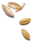 ding-han-shi_weat_seed_c.png