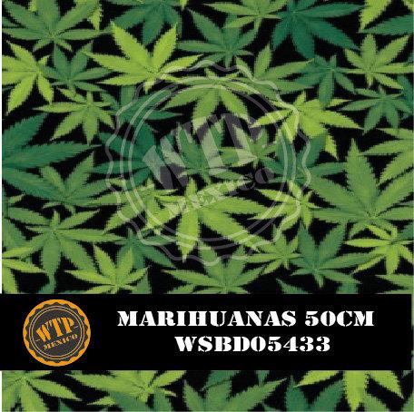 MARIHUANAS 50 CM