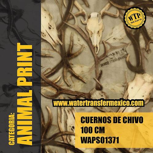 CUERNOS DE CHIVO 100 CM