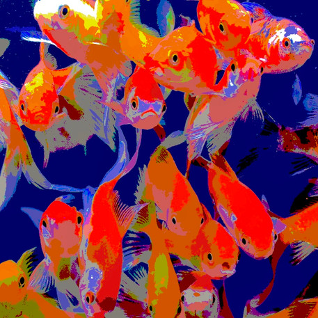 Red fish 1 - 90x90 - 90 €