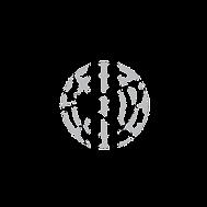 Parrallax-Logo-06.png