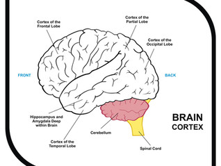 Brainspotting- A New Trauma Treatment