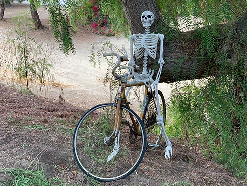 FullertonSkeleton.jpeg