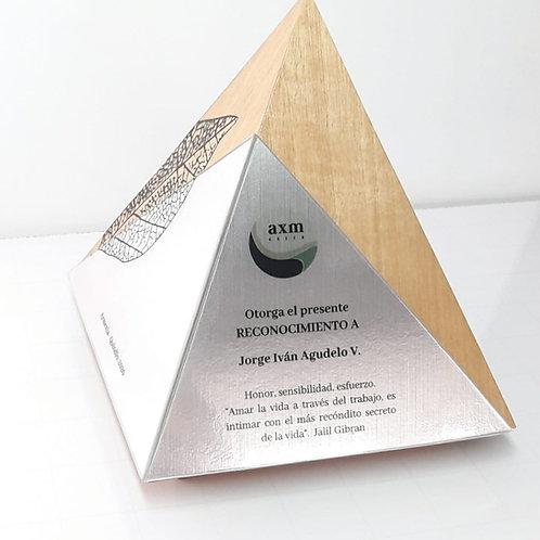 Reconocimiento Pirámide
