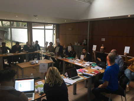 FYCA's representative participated in ECYC's General Assembly