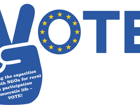 """Call for participants for """"VOTE!"""" Training course in Malta"""