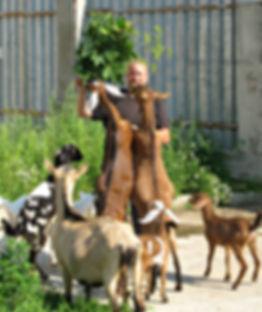 По-Рижский фермер