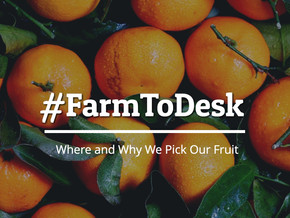 #FarmToDesk: Why and Where We Pick Our Fruit