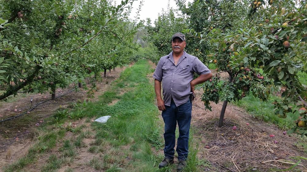 Magana Farms in Sunnyside, WA