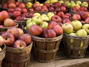 5 Health Benefits of Apples!