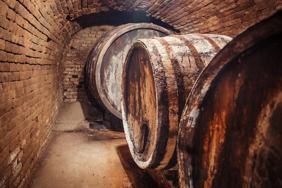 weinverkostung-weingut baier-weinkeller-weinstrasse weinviertel-austrian wine
