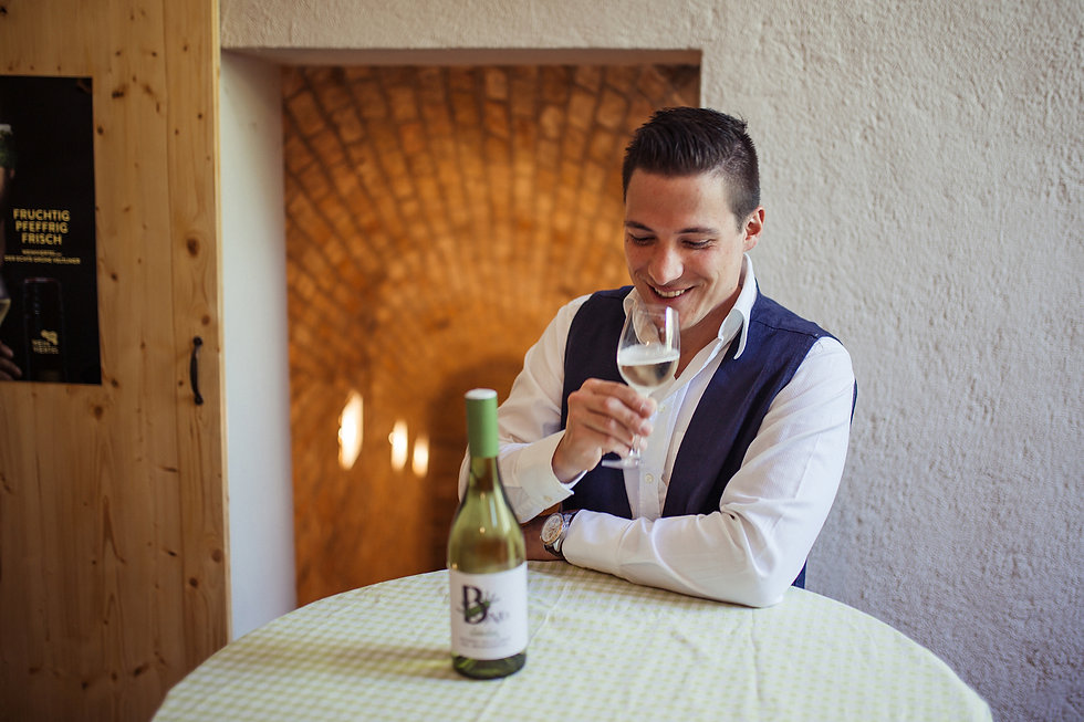 kontakt-weingut baier-herbert baier-winzer-weinviertel-niederösterreich-österreich-austrian wine-weinverkostung-wein