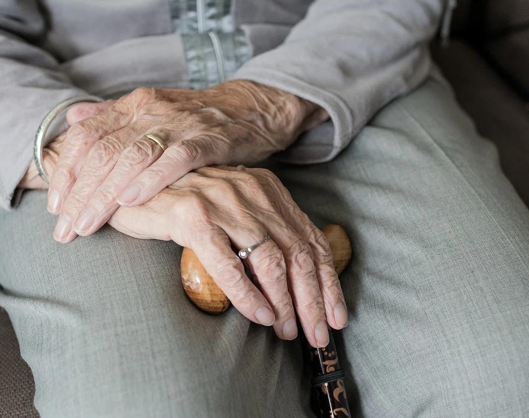 Brinite o starijima, njihova mudrost je ljekovita (Arnela Memić)