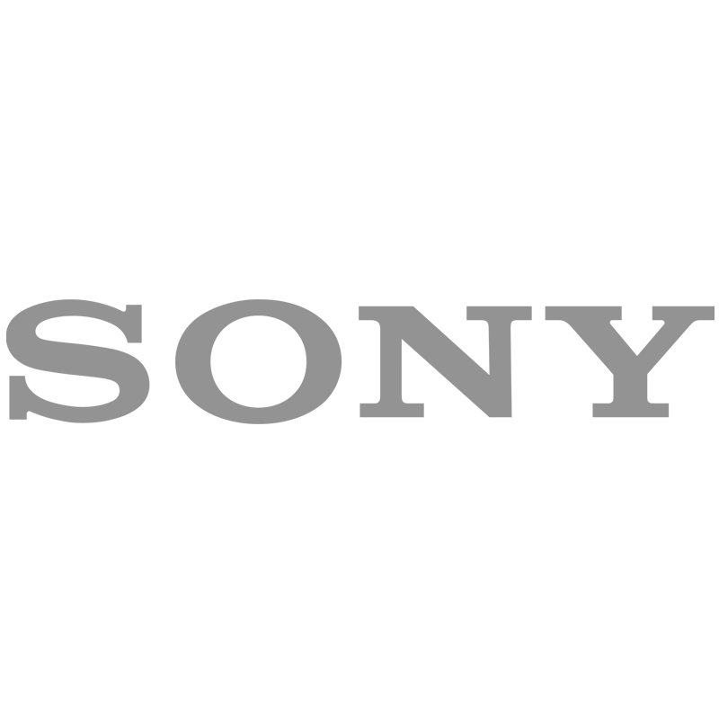Logo SONY B&N copia