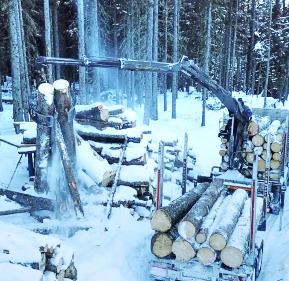 Rundholztransport Schnee