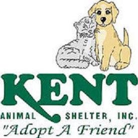 Kent logo website.jpg