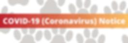 coronavirus-web.png