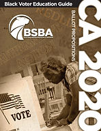 BSBA Voter Prep Guide_Page_1.jpg